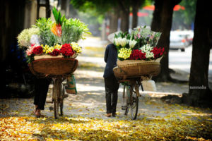 Flower Peddlers
